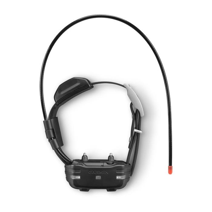 Система дрессировки собак Garmin PRO 550 Plus TT15 Mini комплект